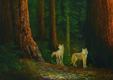 Путешествие волков сквозь реликтовый лес