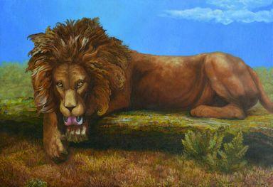 Лев проголодался